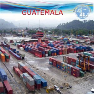 Ocean LCL Freight Agent to Guatemala by Carrier Nyk pictures & photos