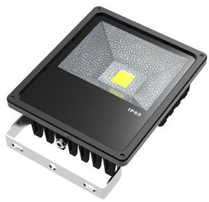 50W Taiwan Chips China Supplier LED Flood Light