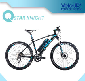 Electric Bike Bicycle With Aluminium 6061 T6 Frame