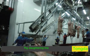 Pig Slaughter Machine Made in China pictures & photos