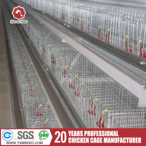 Best Quality Nigeria Type Layer Battery Cage pictures & photos