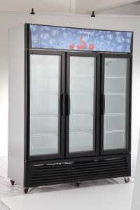 238L 288L Supermarket Upright Soft Drinks Refrigerator Display Showcase (LG238A1) pictures & photos