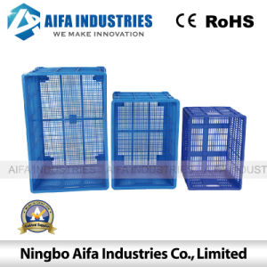 Plastic Injection Mold Fo Fruit Turnover Basket in Different Size