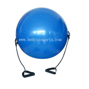 China Gym Ball Carry Strap With Elastic Handles Carry Strap With Handles Body Ball Strap With Expander China Gym Ball Carry Strap With Elastic Handles Carry And Gym Balls Price