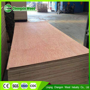 Okoume Birch Plywood 3mm/6mm/9mm/12mm/18mm for South Africa Market