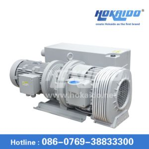 Oil Vane Vacuum Pump for Pheaumatic Conveying (RH0250)