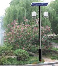 Outdoor New Type Black Color Solar LED Garden Light