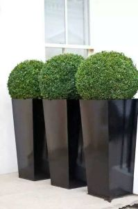 GRP Planters And Flower Pots Indoor Or Outdoor