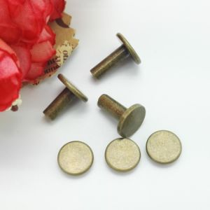 Customized High Quality Stainless Steel Rivets pictures & photos
