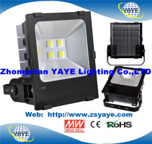 Yaye 18 Hot Sell Ce/RoHS/Osram/Meanwell 160W Outdoor LED Flood Light / 160W LED Flood Lighting pictures & photos