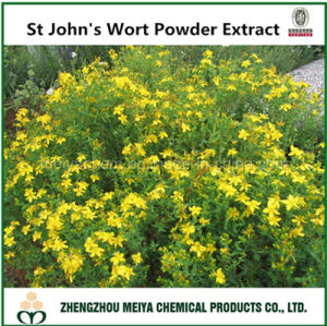 Natural Herb St John′s Wort Powder Extract Hyperlcurn Perforatum with Hypericins pictures & photos