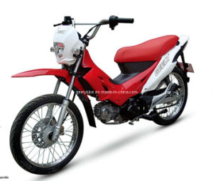 Economic Cub Motorcycle (JL110-13) pictures & photos