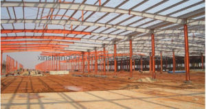 Light Steel Structure Building