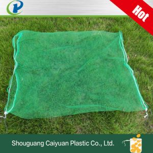 Green Mesh Bag for Date Palm, HDPE Monofilament Palmmesh with Blacking String Collecting and Protection