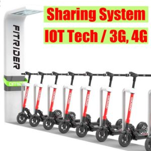 China 2019 Sharing Scooter Solution Swappable Battery