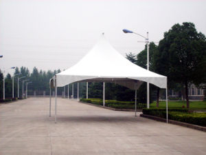 Portable Tent Dome Tent Factory Supplier pictures & photos