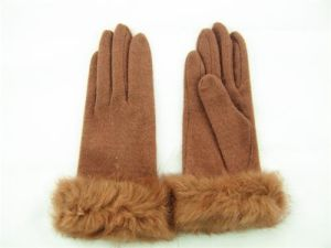 Lady Fashion Wool Gloves (JYG-25023) pictures & photos