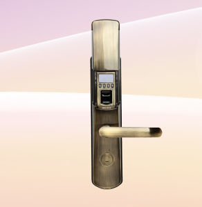 Fingerprint Door Lock with USB Flash Disk (L9000) pictures & photos