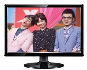 21inch Best Price LCD TV /LED TV /TV Liquid Crystal Display