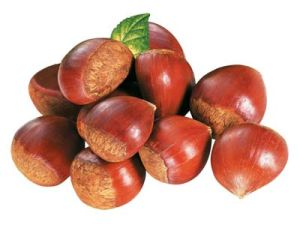 Fresh Delicious Chestnut with Sweet Taste pictures & photos