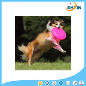 Good Quality FDA Grade Silicone Frisbee/Frisbee for Dog pictures & photos