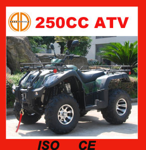 2017 Chinese Best Cheap 250cc ATV Mc-373 pictures & photos