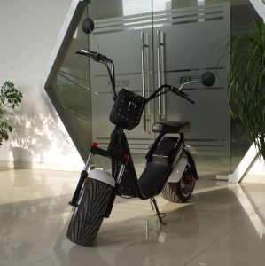 China Ce 1000W Electric Scooter with Upper Removable Li-ion Battery (JY-ES055) pictures & photos
