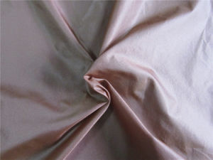 20d Nylon Taffeta Fabric for Down Coat (XSN002) pictures & photos