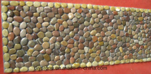 Mixed Colored Door Mat Floor Decoration pictures & photos