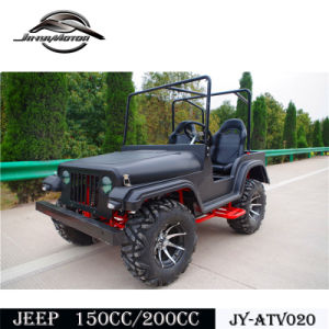 Cheap Buggy for Sale for Teanage pictures & photos
