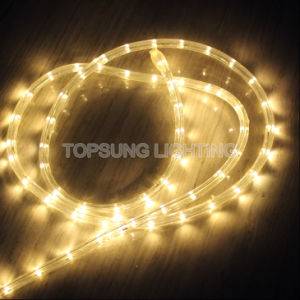 China 230v 50 meter brightest warm white led rope lights 2 wire 230v 50 meter brightest warm white led rope lights 2 wire aloadofball Gallery