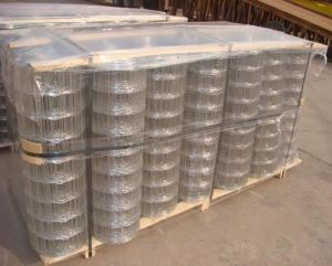 Galvanized Welded Wire Mesh (China anping yaqi factory) pictures & photos