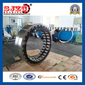 Top Quality Large Size Double Row Cylindrical Roller Bearing/Rodamiento 91681/500-91681/600