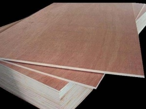 Premium Commercial Plywood Die Cut pictures & photos