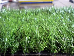 Artificial/Synthetic Grass with Zing Cp