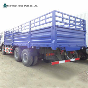 HOWO 10 Ton Lorry Truck for Sale pictures & photos