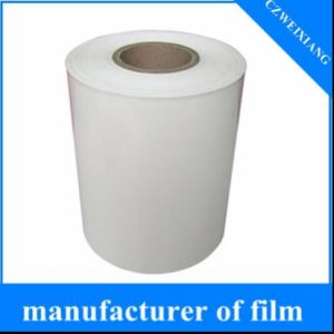 PE Plastic Film in Roll