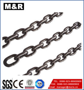 Steel Forged Chain for Lifting Equipment pictures & photos