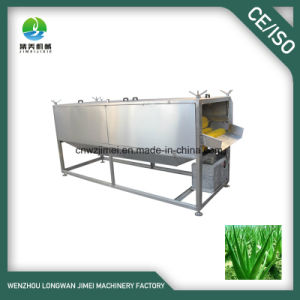 High Quality Cactus and Aloe Vera Leaf Washing Processing Machine/Equipment