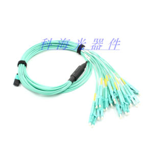 Fiber Optic Patch Lead MPO pictures & photos