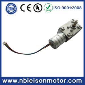 Long Iife Brushless 12 Volt 24 Volt DC Worm Gear Motor pictures & photos