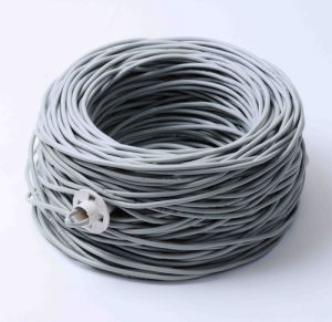 Competitive Price RJ45 Cat5 Ethernet Cable pictures & photos