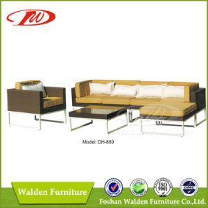 Patio Furniture Sofa (DH-869) pictures & photos