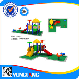Professional Manufacturer Playground pictures & photos