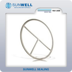 Double Jacketed Gaskets Manufacturer of Sunwell pictures & photos