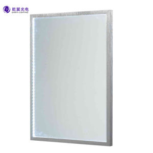 8W LED Backlit Bathroom Wall Mirror Light (QY-M1117)