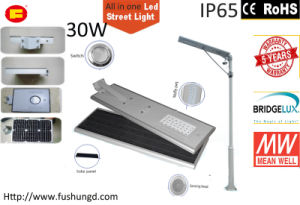30W Integrated Solar LED Street Light with Road