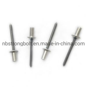 Choose Length 3.2mm Stainless Steel Domed Head POP RivetBlind Open Rivets