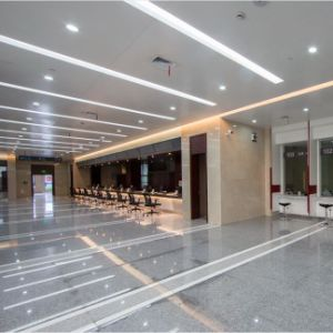 Customized Size Fashion Design Metal Ceiling for Building Decoration pictures & photos
