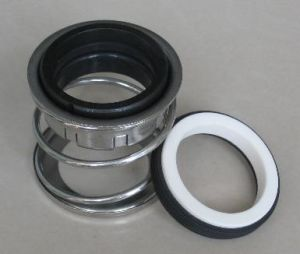 Elastomer Bellow Mechanical Seals (TP 2)